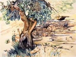 ©1992 Jan Aronson Pistachio Tree Israel Watercolor on Paper 18X24