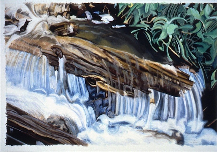 ©1993 Jan Aronson Fourth of July Creek Pastel on Paper 24X36