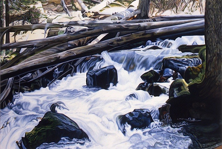 ©1994 Jan Aronson Bench Creek #3 Oil on Canvas 50X72