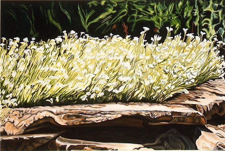 ©1997 Jan Aronson Garden #1 Idaho Oil on Canvas 28x42 SOLD