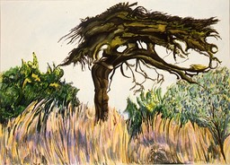 ©1997 Jan Aronson Kenya #14 Watercolor 10x14