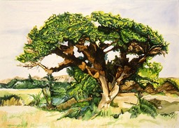 ©1997 Jan Aronson Kenya #4 Watercolor 10x14