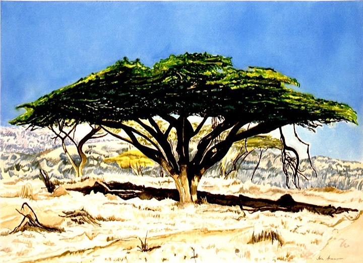 ©1997 Jan Aronson Kenya #9 Watercolor on Paper 10x14.jpg