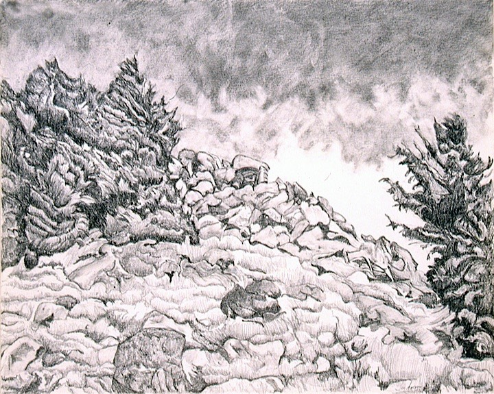 ©2000 Jan Aronson Hiking with M&V #2 Graphite 14x17