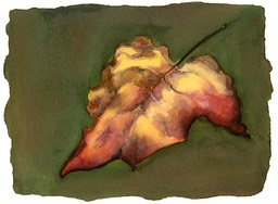©2001 Jan Aronson Leaf #11 Watercolor Paper 6.25x8.5
