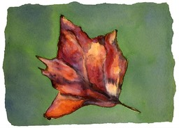 ©2001 Jan Aronson Leaf #13 Watercolor Paper 6.25x8.5