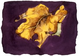 ©2001 Jan Aronson Leaf #15 Watercolor Paper 6.25x8.5