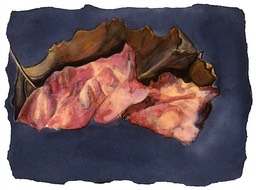 ©2001 Jan Aronson Leaf #16 Watercolor Paper 6.25x8.5