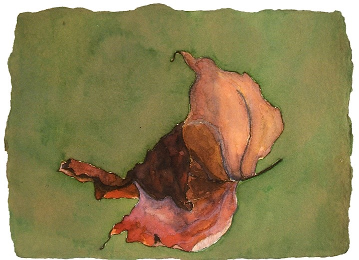 ©2001 Jan Aronson Leaf #1 Watercolor Paper 6.25x8.5