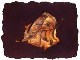 ©2001 Jan Aronson Leaf #3 Watercolor Paper 6.25x8.5