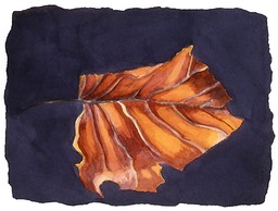 ©2001 Jan Aronson Leaf #6 Watercolor Paper 6.25x8.5