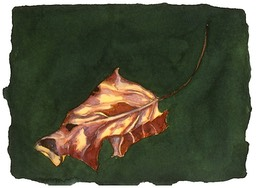 ©2001 Jan Aronson Leaf #8 Watercolor Paper 6.25x8.5