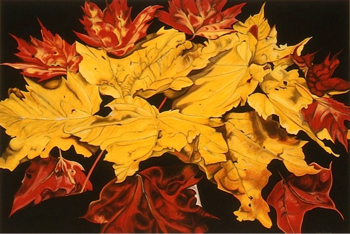 ©2003 Jan Aronson Leaves #26 Oil On Canvas 28x42