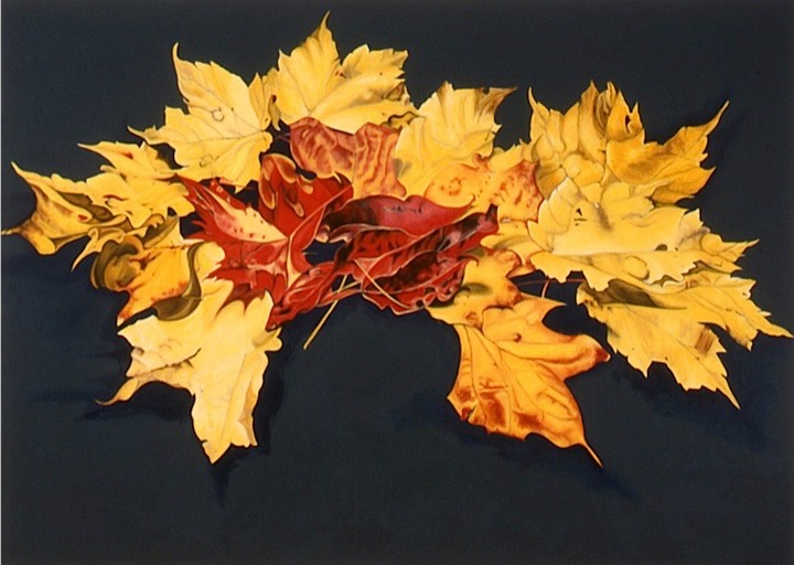 ©2003 Jan Aronson Leaves #28 Oil On Canvas 60x84