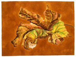 ©2004 Jan Aronson Leaf Watercolor Paper 18x24