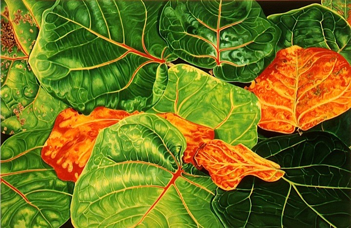 ©2004 Jan Aronson Leaves #37 Oil On Canvas 40x60