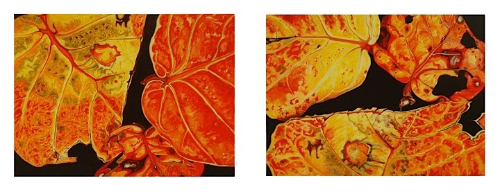 ©2005 Jan Aronson Leaves #45 & 47 as pair Oil On Canvas 18x48